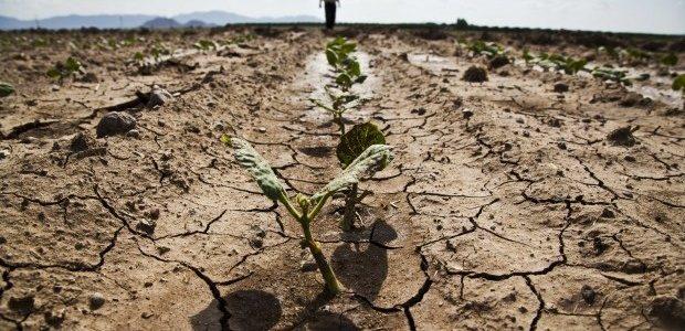 L'emergenza idrica e i cambiamenti climatici.